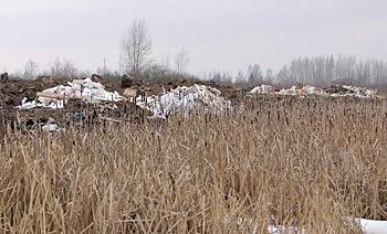 Прокуратура борется со стихийными свалками в Новгородской области