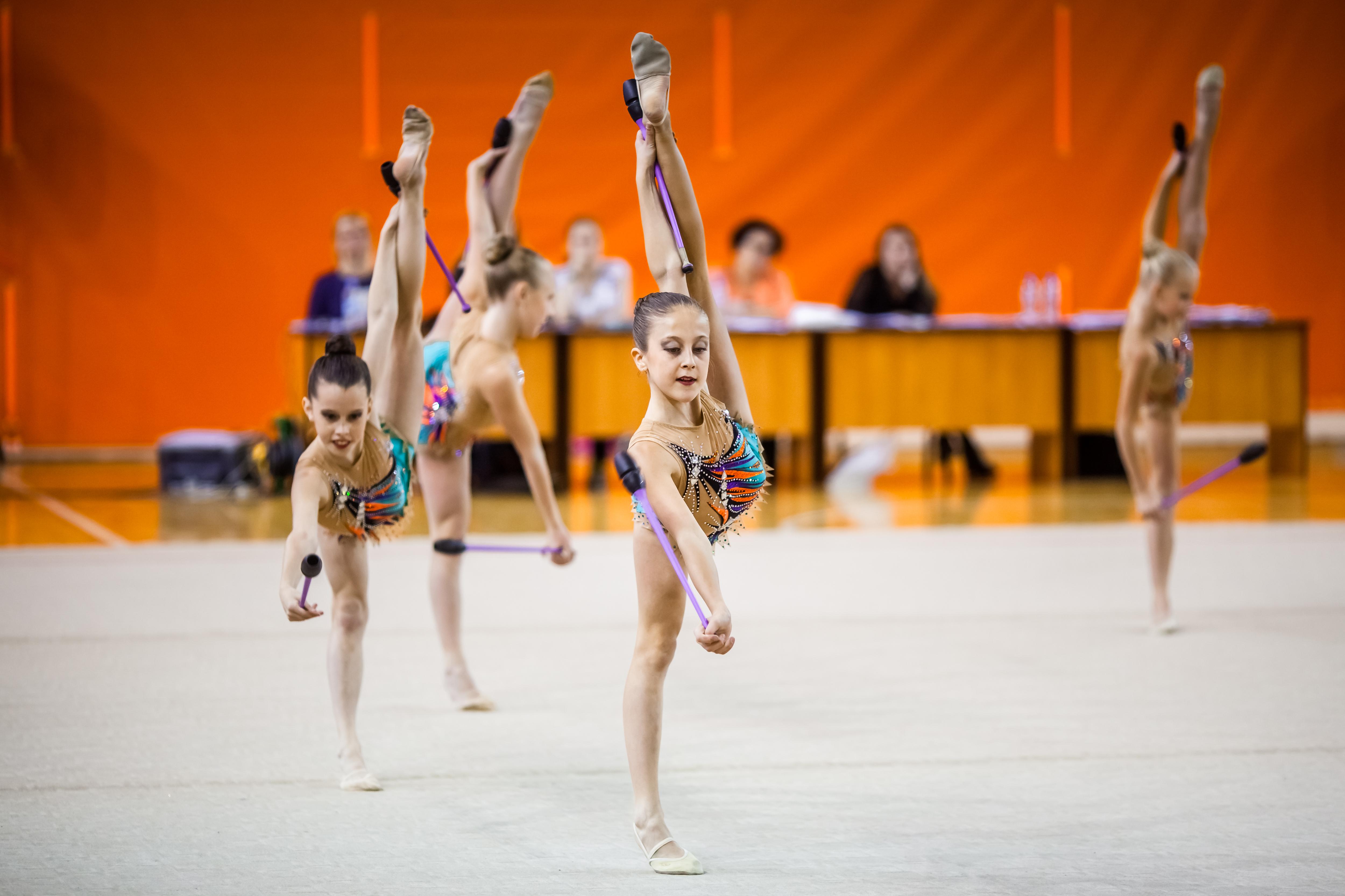 Итоги чемпионата области по художественной гимнастике