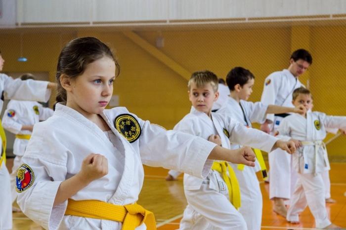 В Великом Новгороде пройдут областные соревнования по всестилевому каратэ и кобудо