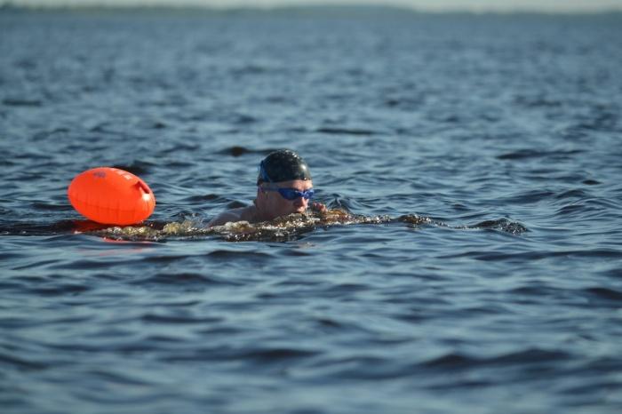 Новгородские моржи вновь переплывут Ильмень
