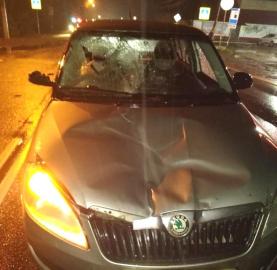 В Новгородской области два пешехода получили травмы В результате этого дорожно-транспортного происшествия  на пешеходных переходах