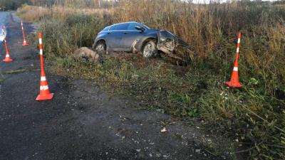 4 человека получили травмы В результате этого дорожно-транспортного происшествия  на новгородских дорогах