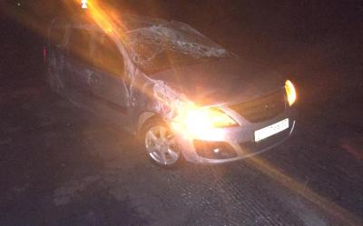 Нетрезвый водитель автомобиля спровоцировал ДТП в Новгородской области
