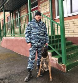 Служебно-розыскная овчарка помогла полицейским раскрыть кражу в Новгородском районе