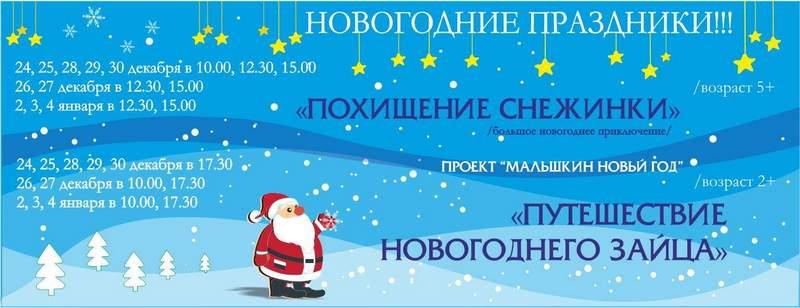 Новый год в Театре Малый