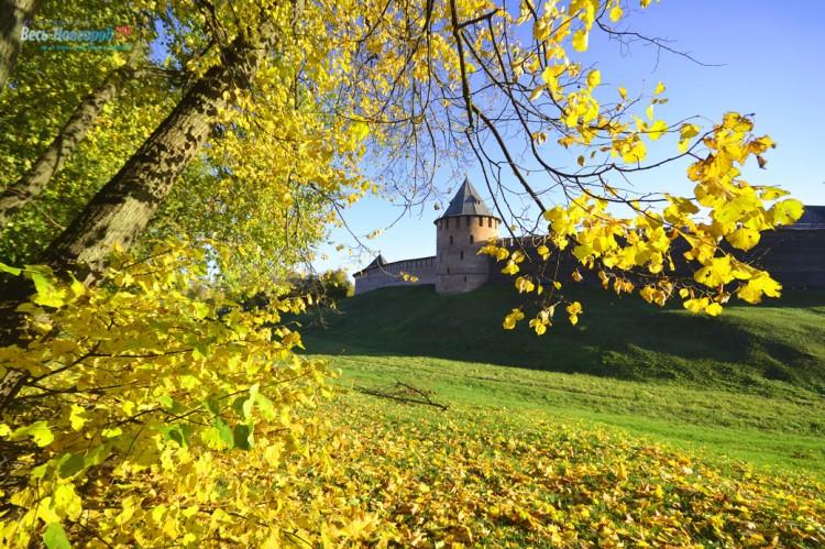 Великий Новгород погрузился в осеннюю листоманию