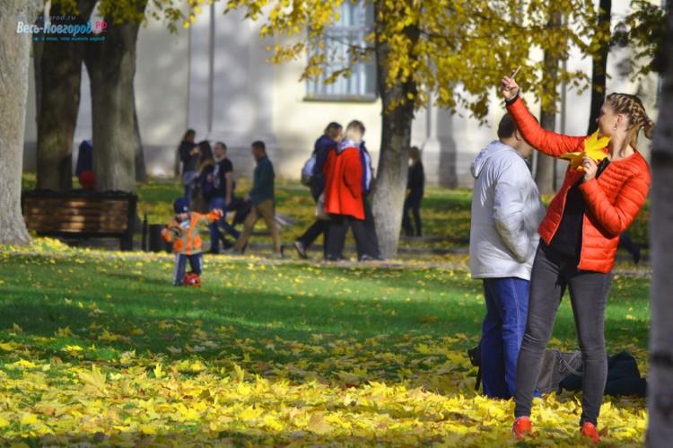 Великий Новгород. Золотая осень. Фото